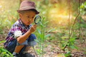 Boy examining tree with a magnifying glass