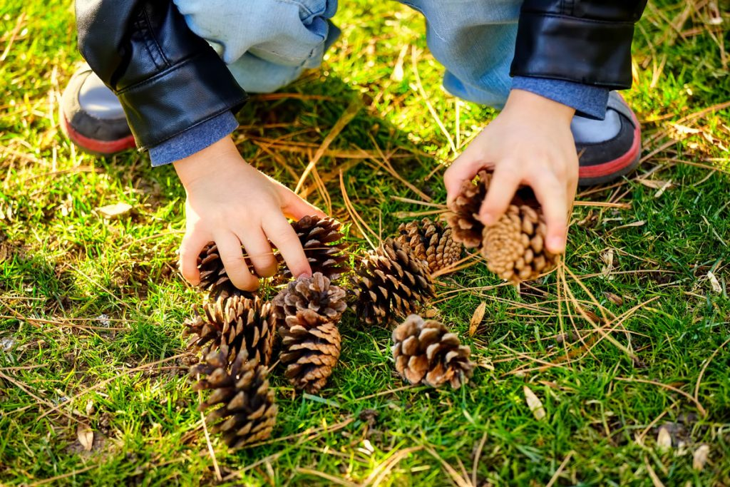 5 ways to connect children with nature • nature speaks to us